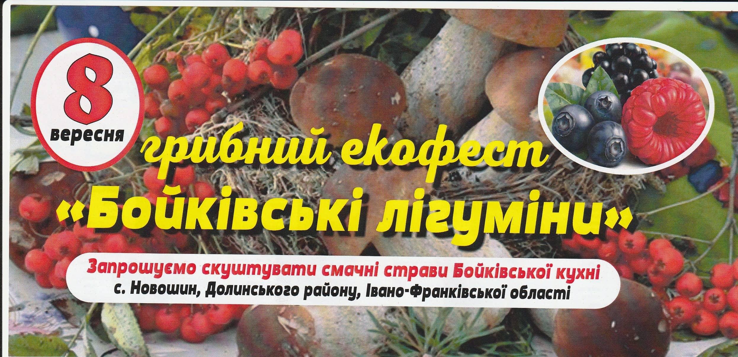 """Грибний екофест """"Бойківські лігуміни"""" в с. Новошин (Вигодська ОТГ)"""