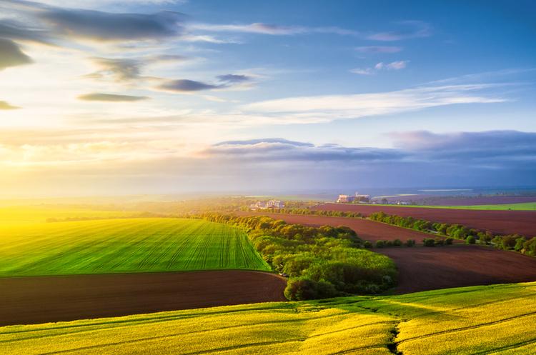 Веб-консультація на тему: «Земельна децентралізація та ...